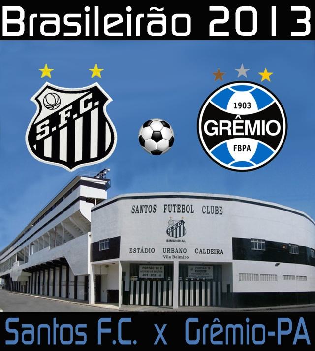 O Santos recebe o Grêmio na Vila Belmiro, pelo Brasileirão 2013 !