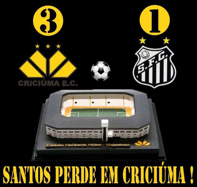 O Santos F.C., perde mais uma no Brasileirão !