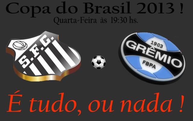 É tudo, ou nada ! O Santos encara o Grêmio na Vila !