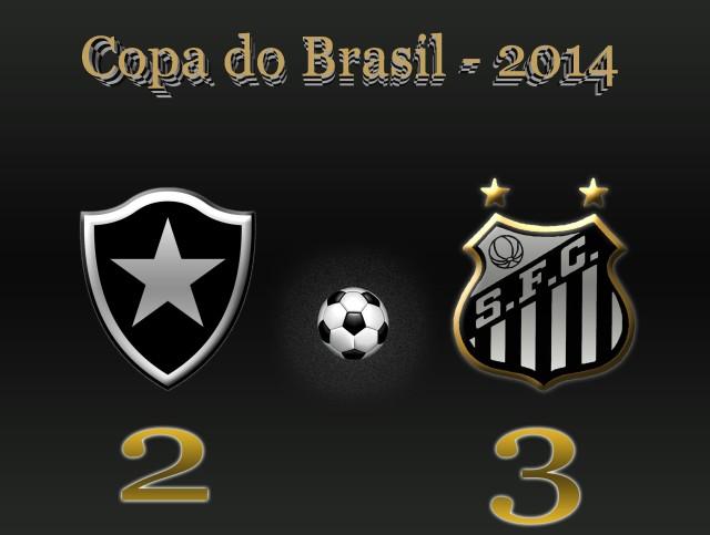Botafogo e Santos